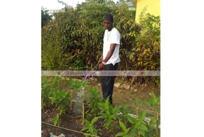 Joshua Forte in his small kitchen garden.