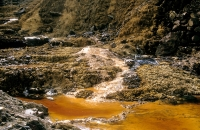 Polluted Lands