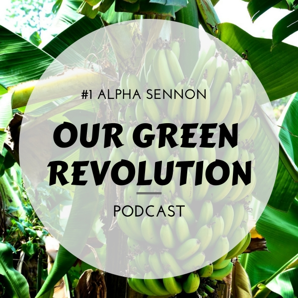 Our Green Revolution #1 - Alpha Sennon (We.Help.Youth Farm)