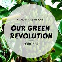 Our Green Revolution #1 - Alpha Sennon (We.Help.Youth Farm)